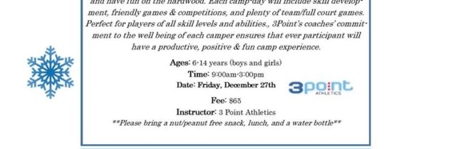 Winter Break 3Point Athletics Basketball Camp (ages 6-14 yrs)